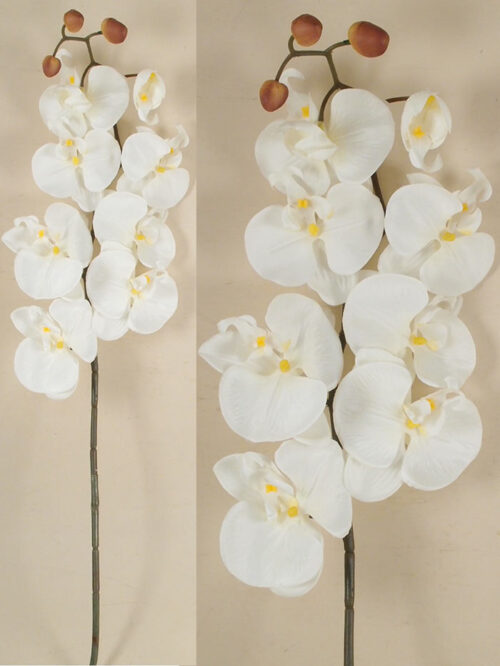 Orchidea phalaenopsis artificiale decorativa Col. bianco