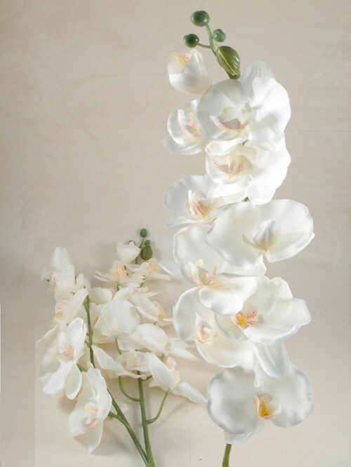 Orchidea phalaenopsis artificiale decorativa